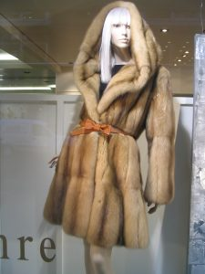 Sable fur coat. Source: Wikimedia Commons.